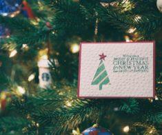Грандиозное открытие благотворительного проекта «Charity Wish Tree»
