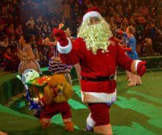 Цирк «Новогоднее Судоку»