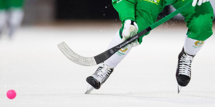 Новогодние Игры среди взрослых и детей по хоккею