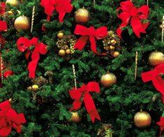 Новогодние праздники в ТРЦ Globus