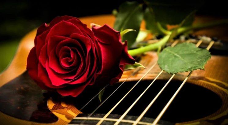 """Концерт """"Реабилитация зимней розы"""""""