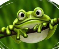Спектакль «Большие приключения маленького лягушонка»