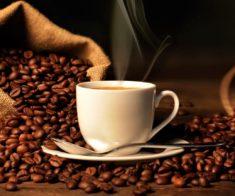 Мастер класс: «Все о кофе. История кофе»