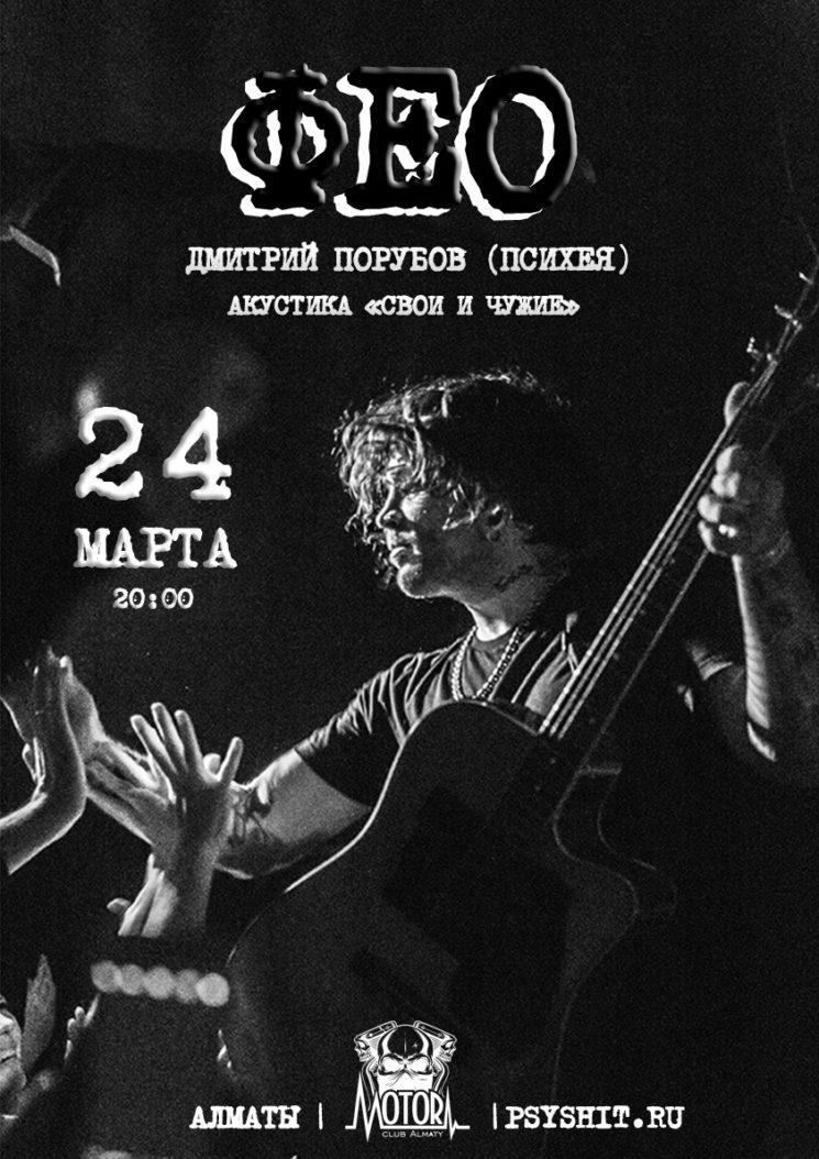 Концерт Дмитрия Фео Порубова