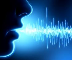 Тренинг «Фокусы языка»
