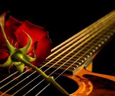 Праздничный концерт: двое поют о любви