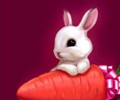 Магический спектакль: «В гостях у кролика Роджера»