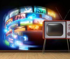 Курс обучения «Сделай карьеру на Телевидение»