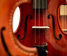 Концерт String Music