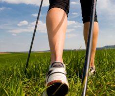 Eurasian Nordic Walking Marathon Cup — Tengri Ultra 2019