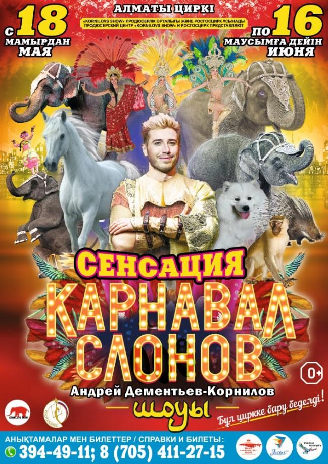 12468u30239_karnaval-slonov-v-almaty
