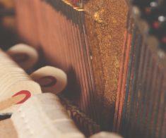 Концерт Piano Duo