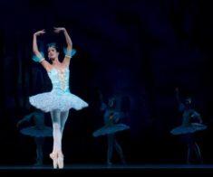 Звезды мирового балета «Лебединое озеро»