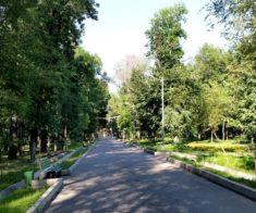 Парк им. С. Сейфуллина