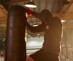 Открытая тренировка от именитых боксеров