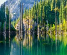 Двухдневный тур: Кольсайские озера, озеро Кайынды и Черный каньон