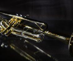 Концерт Matthias Lindermayer Quartet