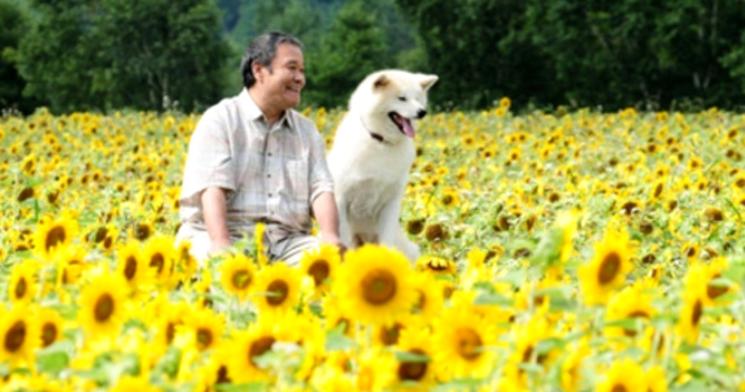 Показ фильма «Собака, смотрящая на звезды»