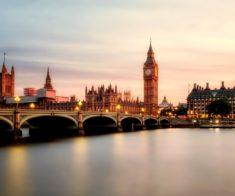 Выставка британского образования Study UK