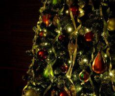 Новогодняя елка в «Тито Авангард»