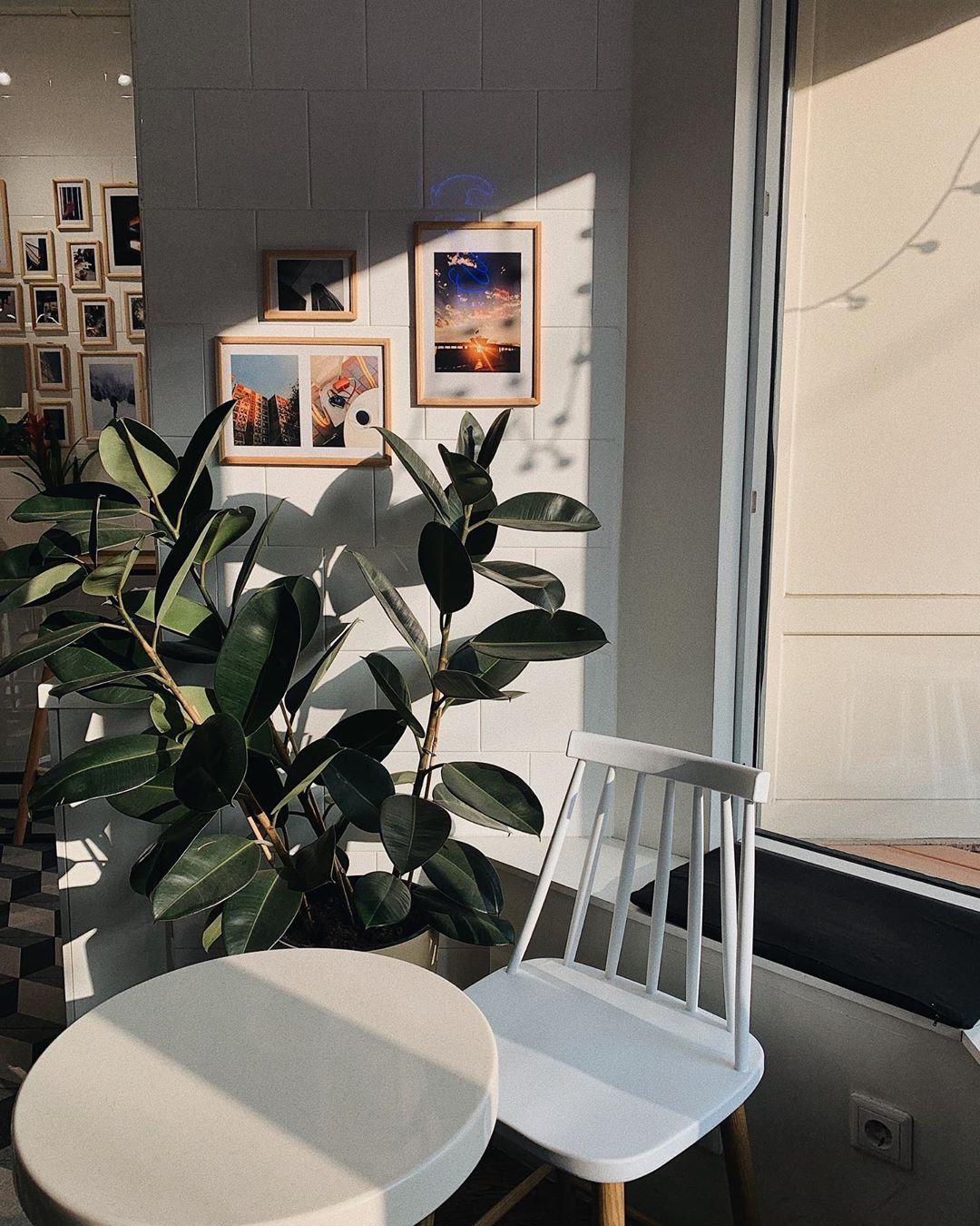 bloom-coffee-shop