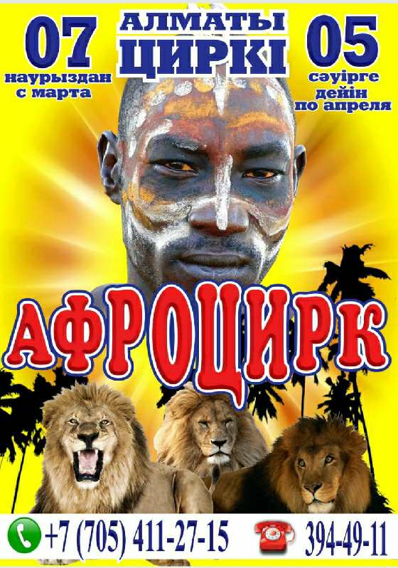 "Цирковое шоу ""Афроцирк"""
