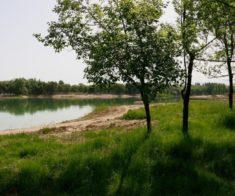 Первомайские пруды