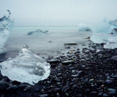 Виртуальное путешествие «Эта загадочная Арктика»