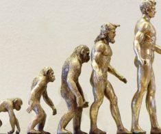 Онлайн-лекция «Странные люди или Что скрывают антропологи»