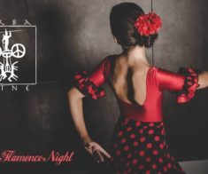 Wine & Flamenco Night