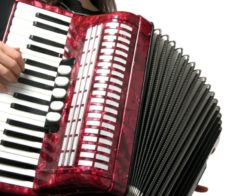 Концерт «Gold accordion»