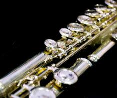 Концерт «Флейты на каникулах»