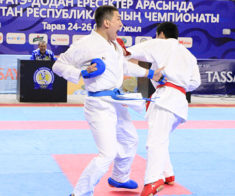 Чемпионат Азии по каратэ-до