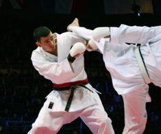 VI-ой Чемпионат Мира по каратэ шинкиокушинкай