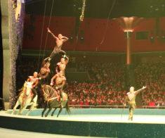 Представление Столичного цирка «С любовью, Астана!»