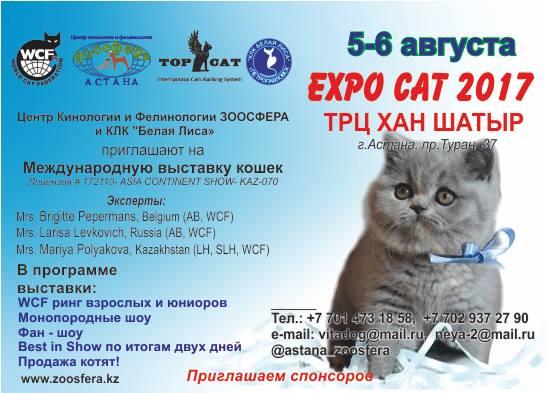 expo-cat