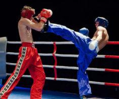 Кикбоксинг. Steppe Fighters