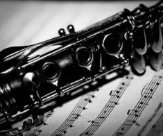 Квинтет деревянных-духовых инструментов