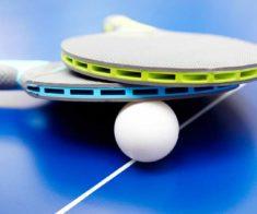 Финал мирового тура по настольному теннису 2017