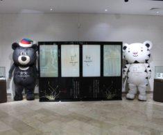 Выставка «Пхёнчхан-2018»