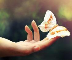 Тренинг Ирины Файб «Как подружить Бабочек в животе с тараканами в голове»