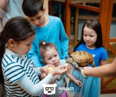 Контактный зоопарк «Ноев Ковчег»