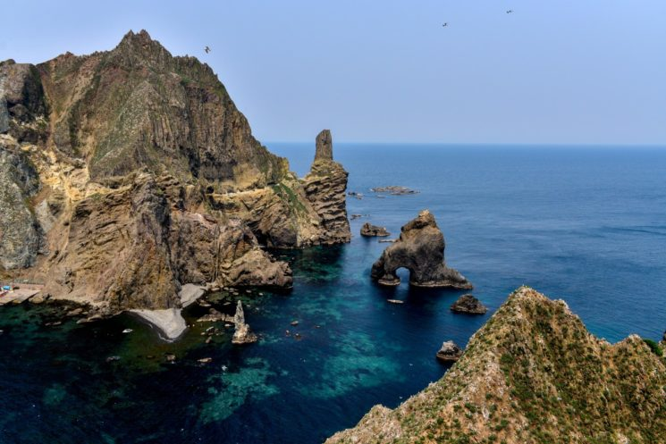 dokdo_korea_our_territory_gyeongsangbuk_do_a_beautiful_island_19_seagull_dokdo_seals-353983-jpg-d