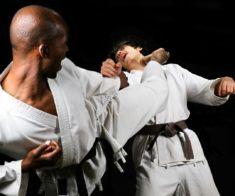 Международный турнир по шинкиокушинкай каратэ