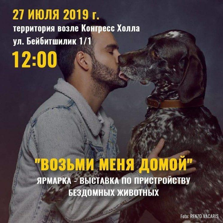 """""""Возьми меня домой"""" Ярмарка - выставка по пристройству бездомных животных"""