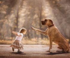 Соревнования по бегу с собакой