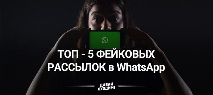 photo5201857535156530856