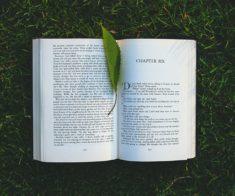 Книги, которые стоит прочесть этим летом