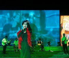 Новогодний шоу-концерт