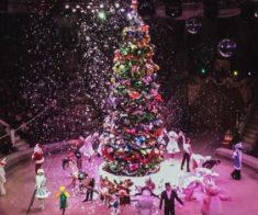 Новогодняя программа в Цирке